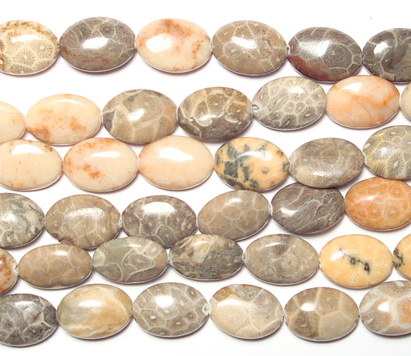 fossil coral bead