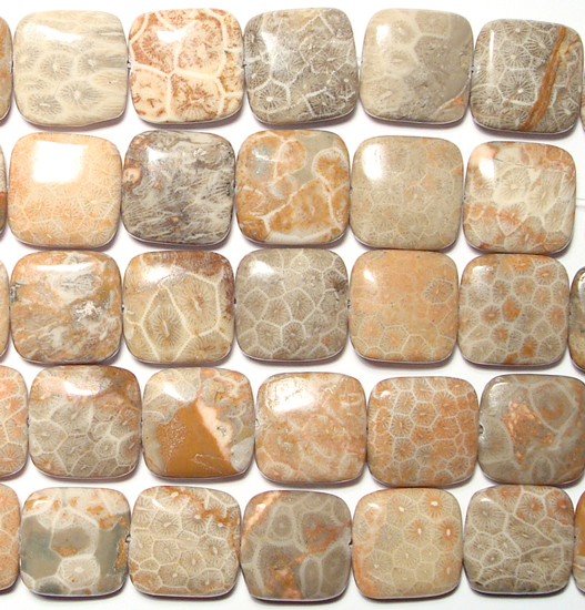 square fossil coral bead