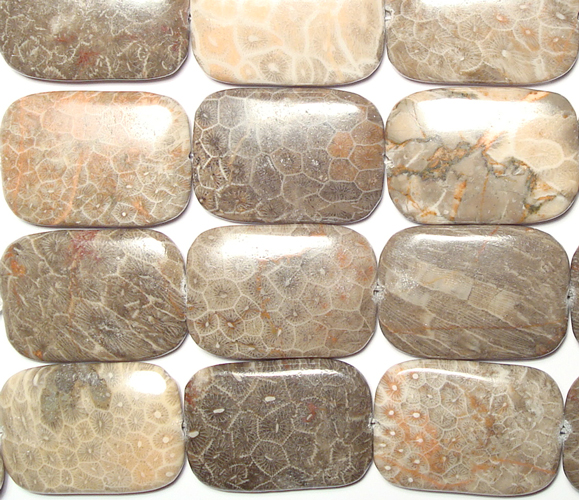 rectangle fossil coral bead